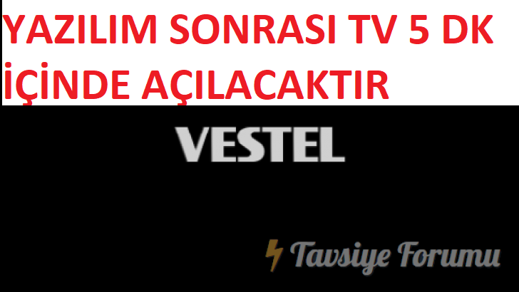 vestel-728x410.png