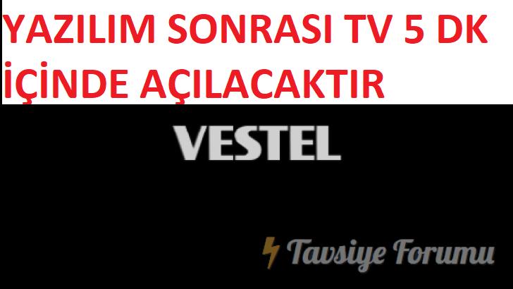 vestel-728x410c3f504eae6104f8b.png